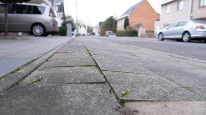 Nieuwe voetpaden en asfalt voor Sprookjeswijk