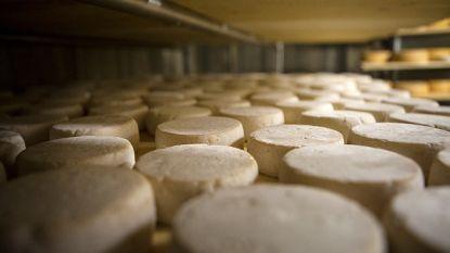 Franse kaasmaker Hardy Affineur haalt geitenkazen op basis van rauwe melk uit handel
