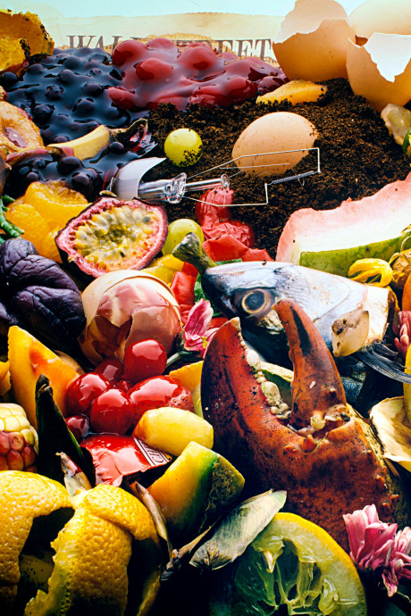 Bananenschillen en etensresten kunnen straks door de gootsteen