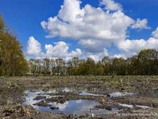 Enschede wil 7 ton 'azc-geld' terug van rijk