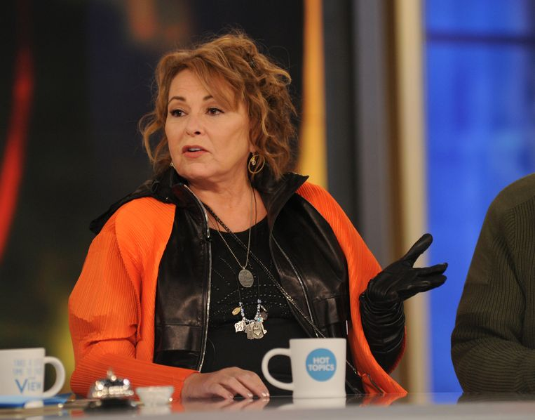 Roseanne Barr Beeld ABC via Getty Images