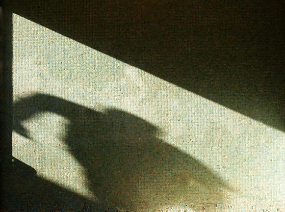 De man viel het meisje 's nachts aan nadat hij haar eerst een tijdlang achtervolgde.