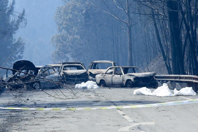 Uitgebrande auto's op de weg na de verwoestende brand.