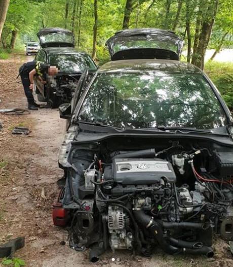 Twee gestripte Volkswagens gedumpt in Loonse en Drunense Duinen