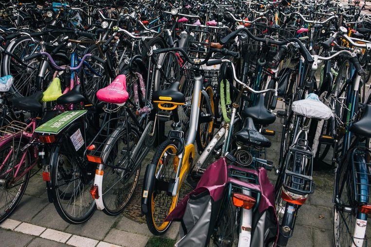 Overvolle fietsenstalling in Rotterdam. Een deel van de treinreizigers kan vaak zijn fiets niet kwijt. Beeld Marcel Wogram / de Volkskrant