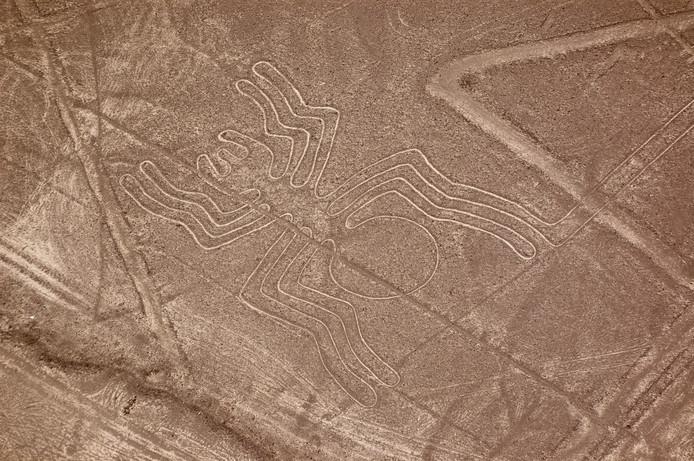 Les lignes et géoglyphes de Nazca sont des motifs géométriques ou animaliers vieux de plus ou moins deux millénaires et situés dans la plaine côtière aride du Pérou.