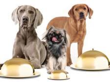 Honden nemen baasjes mee naar  sterrendiner op landgoed in Nijkerk