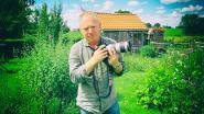 Beroepsfotograaf Thierry Van Vreckem leert jou hoe je de beste vakantiefoto neemt