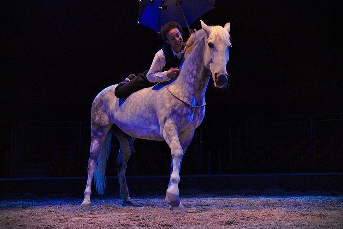 Paardenspektakel 'De Blauwe Stad'