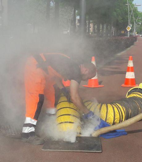 Rookproef brengt gaten in riool Schadewijk Oss aan het licht: 'Hier kruipen de ratten zó de rioolput uit'