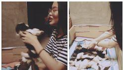 Schattige video toont hoe pups braaf in de rij wachten op nachtkusjes van baasje en dan hilarisch 'in slaap vallen'