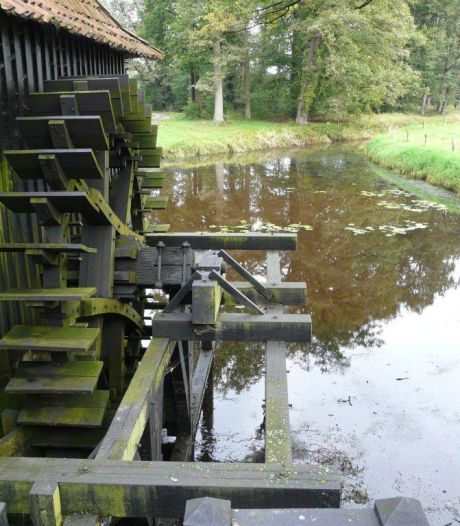 Watermolen op Twickel slaat weer olie uit lijnzaad