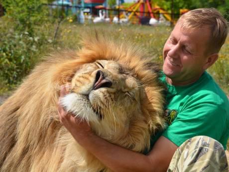 """Le gérant d'un zoo doit céder ses 30 ours pour éviter leur euthanasie: """"Si quelqu'un veut les sauver..."""""""