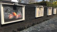 Internationaal Kunstcentrum Glo'Art opent de deuren