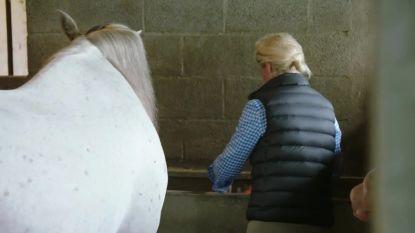 De Gelukzoekers: Ilse Beyers laat traantje vallen bij afscheid van haar paard El Señor