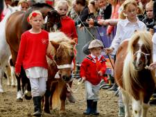 Dit moet je weten over de Paardenmarkt in Vianen