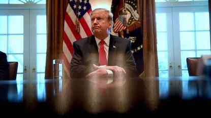"""""""Grootsheid"""" wordt vanavond thema van Trumps tweede 'State of the Union'"""