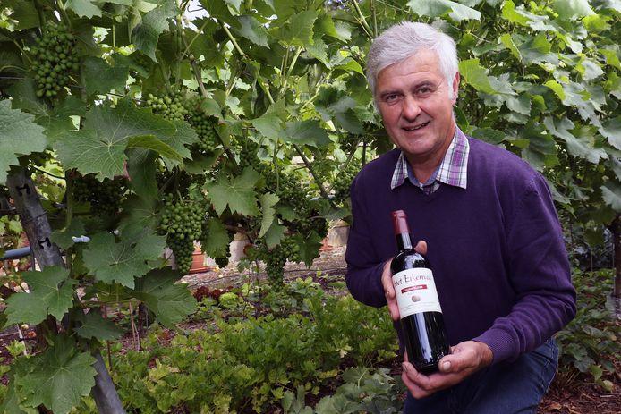 Gust Bertels in de wijngaard van Het Eikenvat.