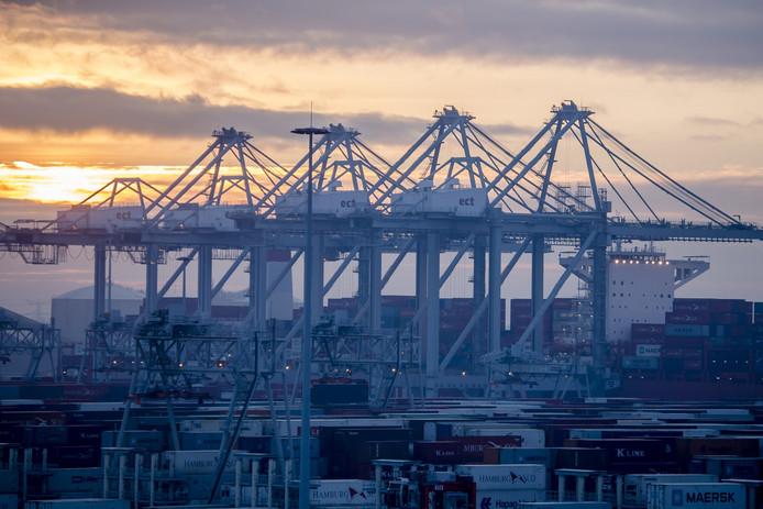 De kranen op het terrein van APMT op de Tweede Maasvlakte in de Rotterdamse haven zullen maandag voor 2 minuten even niets hijsen. Foto ter illustratie.