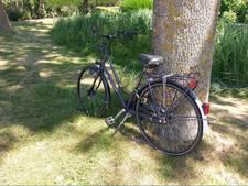 Fiets die al 2,5 week tegen boom in Wilnis staat, roept vragen op