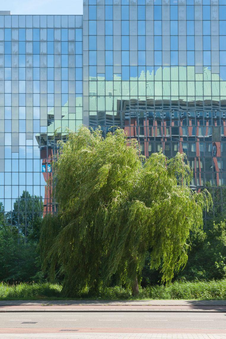Gebouw van UWV in Queens Towers aan de Delflandlaan, gezien in de spiegelende ruiten van een kantoor aan de Hendrikje Stoffelsstraat, West.  Beeld Ko Hage