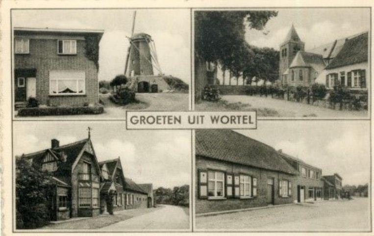 De stad Hoogstraten zoekt ambassadeurs voor Wortel, die de toekomstversie van het dorp mee willen uitwerken.