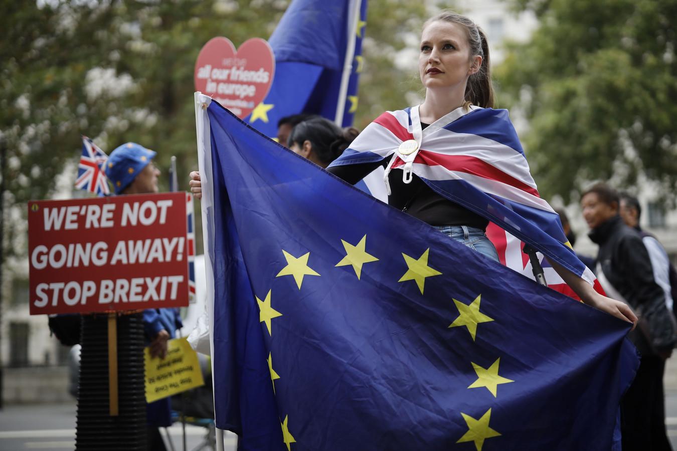 Demonstranten tegen de brexit.