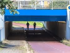 In deze drukke Hortensiatunnel mishandelden jongeren een vrouw