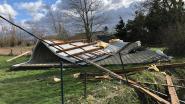 FOTO: Ravage groot in en rond Dendermonde: dak weggeblazen tot in weide, weggewaaide zonnepanelen, omgewaaide bomen op auto's, brandweer heeft handen vol