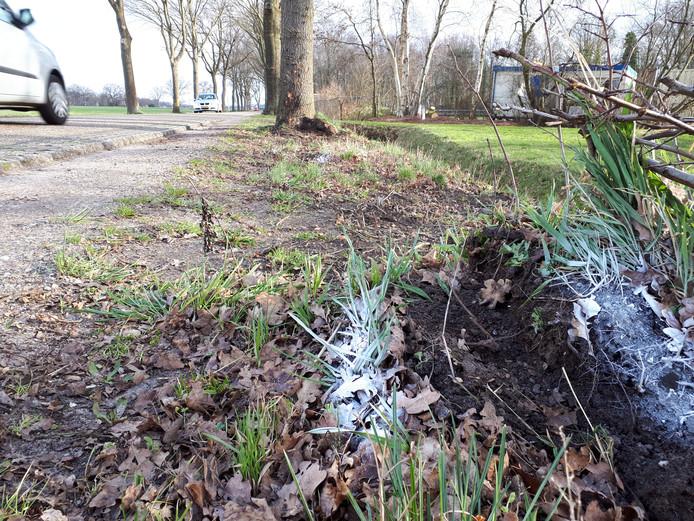 Aan de Bovenlandweg in Vriezenveen is woensdagochtend om 8.15 uur het levenloze lichaam aangetroffen van de 14-jarige jongen, die een dag eerder als vermist is opgegeven.