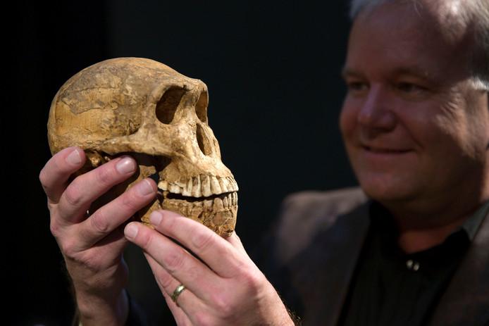 Professor Lee Berger houdt de schedel van een Homo naledi vast.
