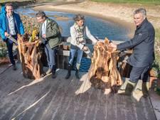 IJsselproject afgerond: 22 km ruimte voor vissen en planten