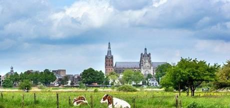 Staatsbosbeheer start met hoger waterpeil pas in 2019 in Bossche Broek