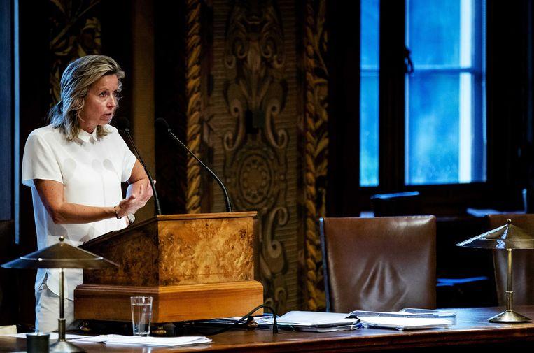 Minister Kajsa Ollongren in de Eerste Kamer tijdens het debat over de intrekking van de wet raadgevend referendum, 3 juli 2018. Beeld ANP