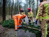 Stormschade in Helmond en Mierlo: dakrand los, bomen omgewaaid
