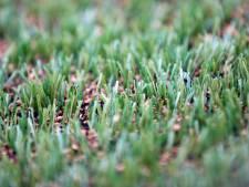 Hengelo heeft liever 'schoon' rubber dan omstreden SBR-rubberkorrels op kunstgrasvelden