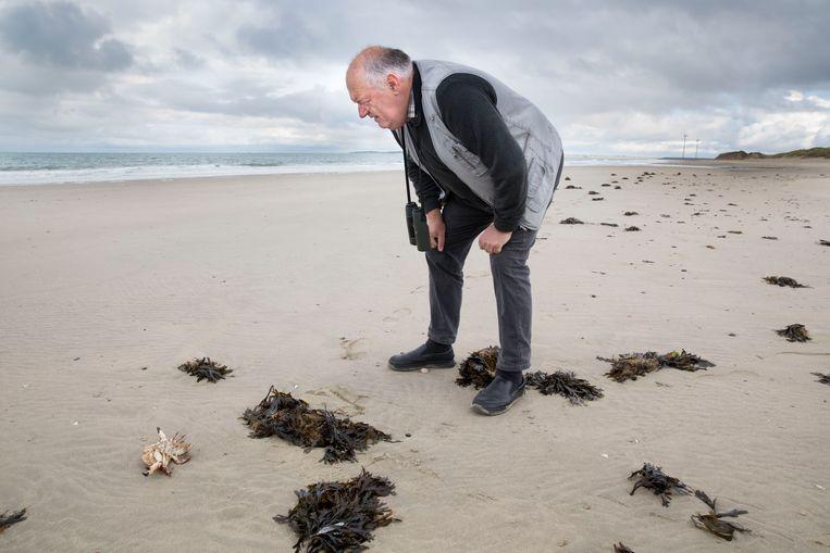 Chiel Jacobusse van Zeeuws Landschap op het strand bij Neeltje Jans.  Beeld Arie Kievit