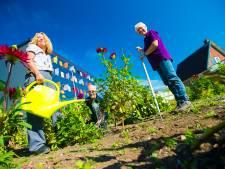 Biologische tuin Havenpark haalt benodigde 10.000 euro binnen