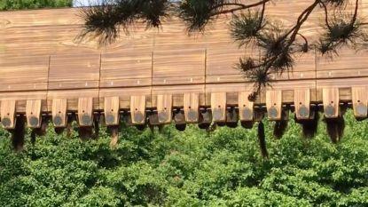 VIDEO - De nachtmerrie van elke pretparkbezoeker: net wanneer je ondersteboven hangt, blokkeert attractie in Walibi