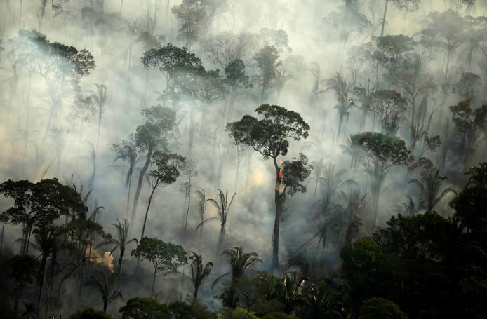 Brand in de Amazone in Brazilië. Vuur is één van de methodes die wordt gebruikt om gebieden te ontbossen.