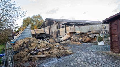 Brand in paardenstal werd volgens deskundige aangestoken, onderzoek loopt