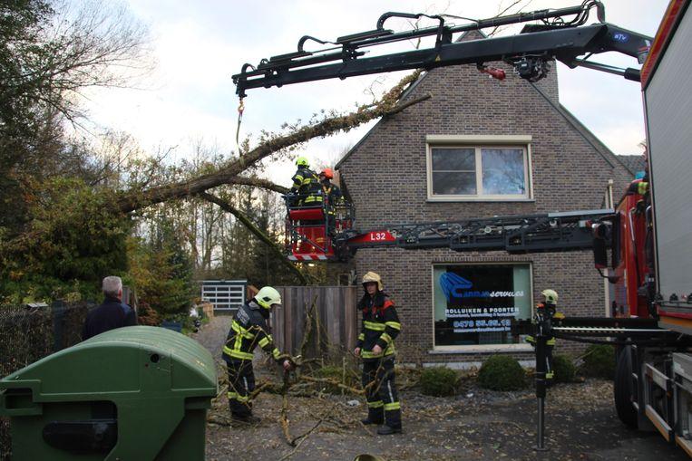 Langs de Kleine Steenweg in Erpe belandde de boom op een huis.