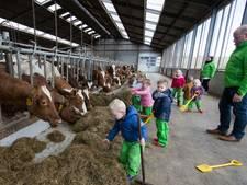Kinderopvang Kleine Kornuiten groeit als kool