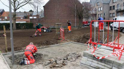Kuispunt Scheppersstraat-Bergenstraat krijgt nieuwe groenzone