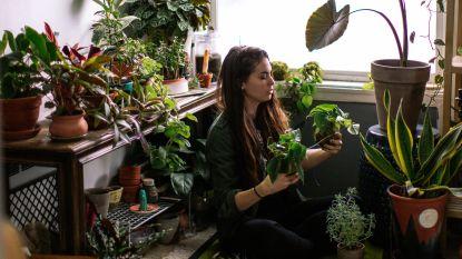 Plantenliefhebber in huis? Dan herken je vast de frustraties van deze man
