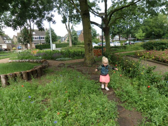 Voorzichtige stapjes in de natuurtuin in Woudrichem.