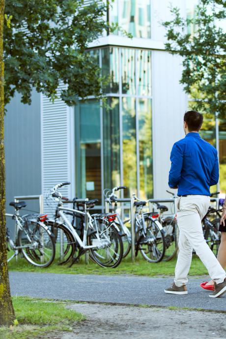 230 banen weg bij Philips in Eindhoven en Best