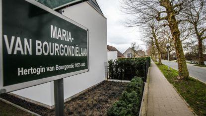 """Drie van vier nieuwe straten in Koolkerke vernoemd naar een vrouw: """"We maken er werk van"""""""