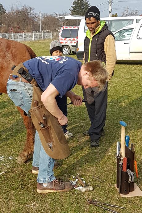 Lintje voor Klarenbeekse voorvechter van betere leefomstandigheden Roemeense paarden