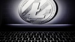 Charlie creëerde de 'Litecoin'. Maar nu waarschuwt hij kopers nadat zijn cryptomunt met 5.500 procent is gestegen